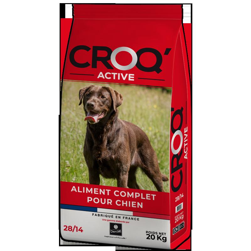 Croquettes chien CROQ'ACTIVE - 20 kg