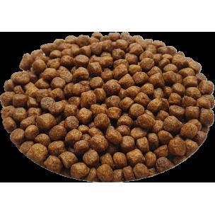 Croquettes Originelle chaton SANS CÉRÉALES - 2,5 kg