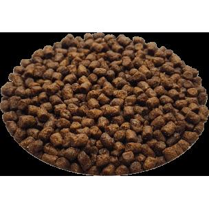 Croquettes Essentielle chaton riche en poulet - 3 kg